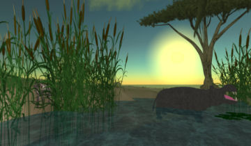 africa non-profit in Virtual Worlds